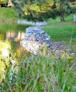 pond3 (2)